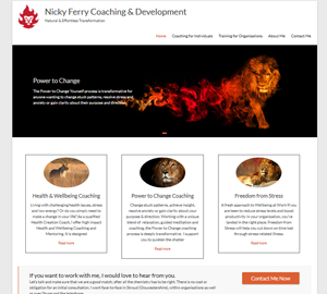 Nicky Ferry Coaching & Development
